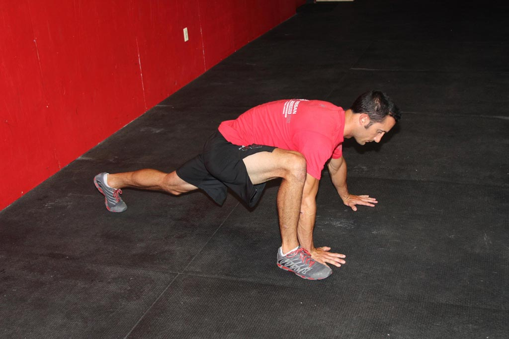 plank lunge